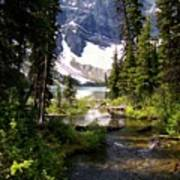 Forest View To Mountain Lake Art Print