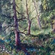 Forest Wildflowers Art Print