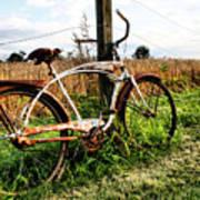 Forgotten Bicycle Art Print