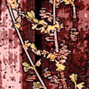 Forsythia Branch Art Print