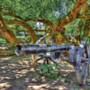 Fort Harrod Cannon Art Print