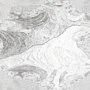 Fossilizing Art Print