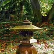 Foster Botanic Garden 5 Art Print