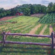Fosterfields Farm Art Print