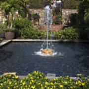 Fountain And Peppers Art Print