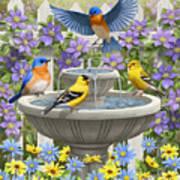 Fountain Festivities - Birds And Birdbath Painting Art Print