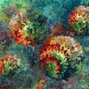 Four Balls Art Print