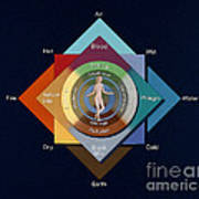 Four Elements, Ages, Humors, Seasons Art Print