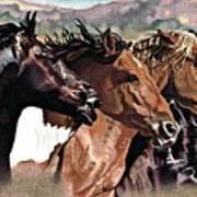 Four Horses Art Print