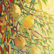 Four Lemons Art Print by Jennifer Lommers