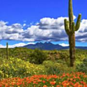 Four Peaks And Poppies, Springtime, Arizona Art Print