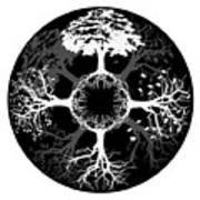Four Seasons Of Tree Art Print