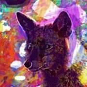 Fox Animal Tuscany  Art Print