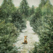 Fox In The Flurries Art Print