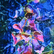 Foxgloves Art Print