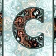 Fractal - Alphabet - C Is For Complexity Art Print