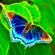 Fractal Butterfly Art Print