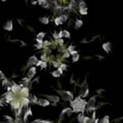 Fractal Floral Pattern Black Art Print