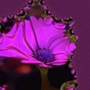 Fractual Flower  Art Print