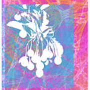 Framed Cherries Art Print