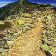 Franconia Ridge Alpine Trail Art Print