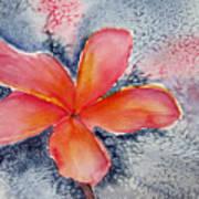 Frangipani Blue Art Print