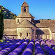 All Purple, Cistercian Abbey Of Notre Dame Of Senanque, France  Art Print