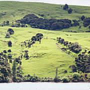 French Bay Panorama Art Print