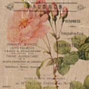 French Burlap Floral 4 Art Print