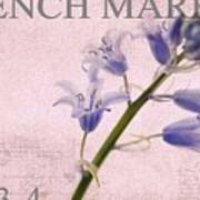 French Market Series A Art Print