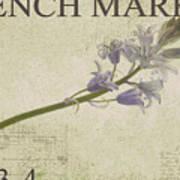 French Market Series F Art Print