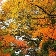 Fresco Autumn Diptych Right Art Print