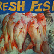 Fresh Fish Art Print
