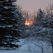 Fresh Snow At Sunrise Art Print