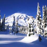 Fresh Snow Art Print
