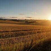 Freshly Harvested Fields Of Barley In Countryside Landscape Bath Art Print