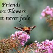Friends Are Flowers That Never Fade Art Print