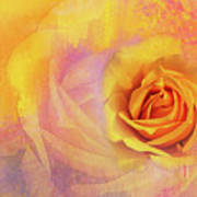 Friendship Rose Textured Art Print