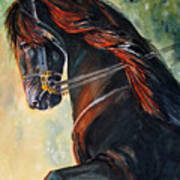 Friesian Sunset Art Print