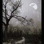 Frigid Moonlit Night Art Print