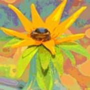 Frog A Lilly 2  - Photos Bydebbiemay Art Print