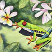 Frog And Plumerias Art Print