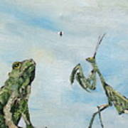 Frog Fly And Mantis Art Print by Fabrizio Cassetta