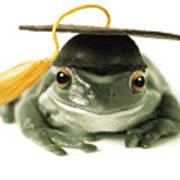 Frog Graduate Art Print