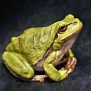 Frog - Id 16236-105016-7750 Art Print
