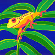 Frog On Branch Art Print