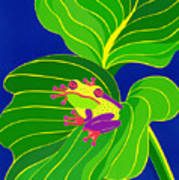 Frog On Leaf Art Print