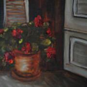 Front Porch Flowers Art Print