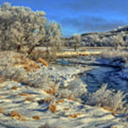 Frost Along The Creek Art Print