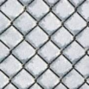 Frosty Fence Art Print
